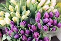 Skaistākais veids kā iepriecināt mīļoto – ziedi