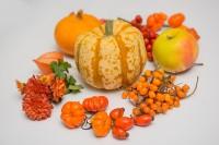"""28. septembrī notiks ēdiena gatavošanas meistarklase """"Sakņu sapnis"""""""